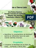 II - DILEMA-COMPOSTA O TIERRA LISTA.ppt
