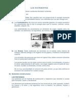 LOS NUTRIENTES.docx