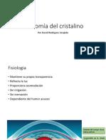 Anatomía Del Cristalino