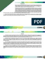 CDRA Fianl (Feb 22).docx