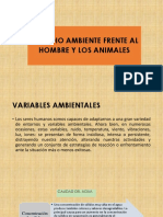 DISEÑO RURAL 2.pptx
