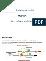 Sistema_Motor_Somático.pdf