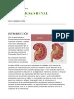 Indagación bibliográfica Enfermedad Renal Crónica