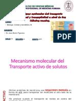 36377_7000961615_05-13-2019_203245_pm_Sistema_Urinario_Clase_6_Dr._Barón