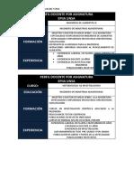 Perfil Docente Del Plan 2017 (1)