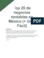 Top 20 de Negocios Rentables en México