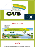 Presentacion Cvs