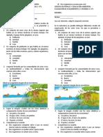 evaluación de seguimiento. ciencias 4°