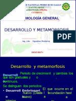 DESARROLLO EMBRION Y POSTEMBRION.pptx