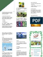 Triptico - Factores de Los Ecosistemas