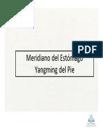 15_Meridiano Del Estmago Yangming Del Pie