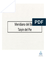 16_Meridiano Del Bazo Taiyin Del Pie