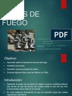 1526316313460_ARMAS DE FUEGO