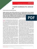 Amyloid Carbon Hybrid Membranes