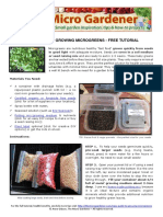 Guide to Growing Microgreens Free Tutorial Download