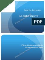 Alghe Azzurre (p)