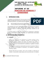 Informe 5 Hongos y Levaduras
