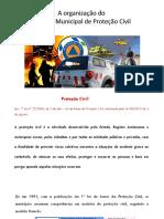 8_Organização Do Serviço Municipal de Proteção Civil
