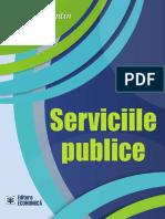 Dragos Dinca, Serviciile Publice