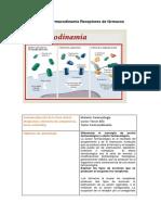 farmacodinamia formulario