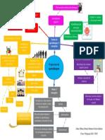 Mapa Mental Teorias das Aprendizagem