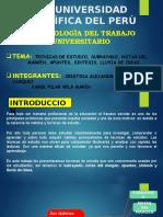 Diapositivas de Tecnicas