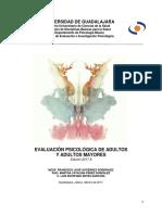 Manual EPAAM 2017. Final.pdf