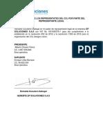 7.Designacion de Los Representates Del Ccl Por Parte Del Representante Legal