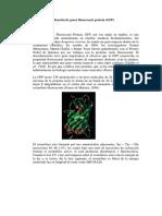 GFP Manual