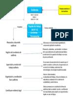 HAVA_Auditoría Integral - Evidencia y Papeles de Trabajo