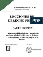LECCIONES DE DERECHO PENAL.pdf