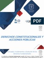 Derechos Constitucionales y Acciones Publicas - i.2019-1