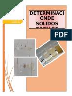 DETERMINACION DE SOLIDOS TOTALES