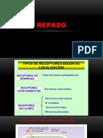 TRILCE ANUAL ENDOCRINO.pptx