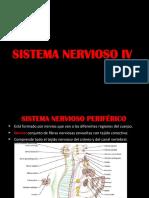 Sistema Nervioso IV