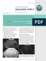 Small Animal Abdominal Ultrasonography Liver & GallBladder - Part 2