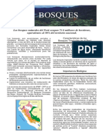 brochure de bosques