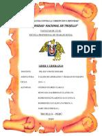 INFORME DE LIDERAZGO.docx
