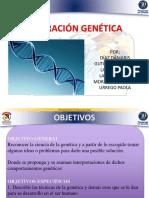 Ingenieria Genetica (1) (1)