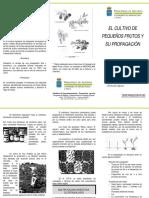 ARANDANO 2   854.pdf