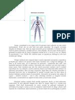 Sistemul circulator.docx