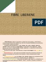 Fibre Liberiene
