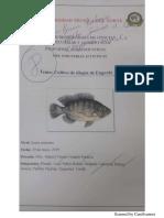 Trabajo de Consulta Grupo de Tilapia.pdf