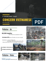 Presentation - 5 Problems That Concern Vietnamese