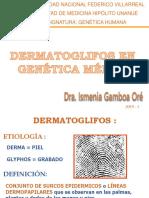 Dermatoglifos en Genética Médica 2019