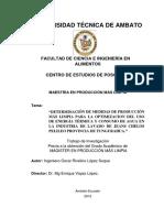 determinacion de medidas de prosuccion mas limpia para la optimizacion del uso de energia termica y consumo de agua en la industria de lavado de jeans.pdf