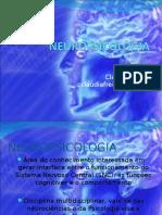 300520339-Neuropsicologia.pdf