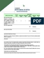 9.- Informe Semanal Gestion Ente -04 Abril Modelo