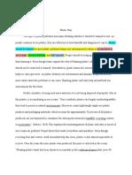 argumentative essay - bianca dinkha