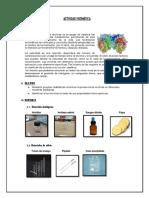 PRÁCTICA Nº 07 enzimas-convertido.docx
